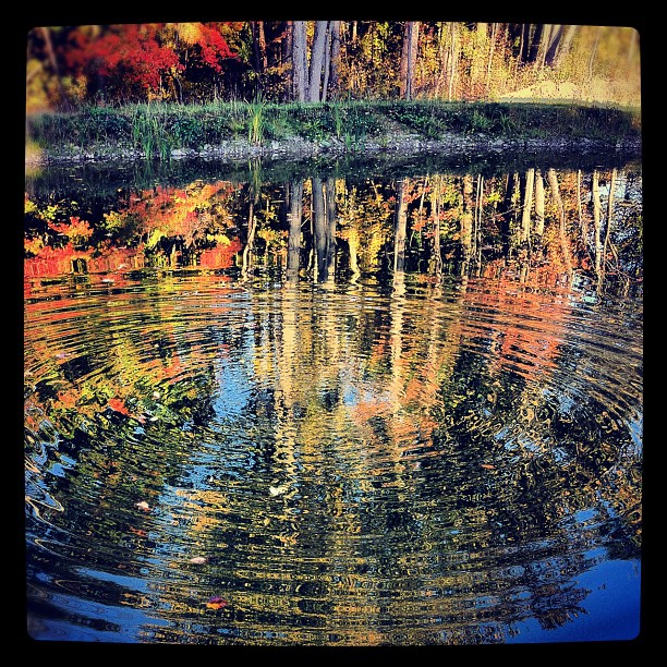 #inthefingerlakes Instagram Contest: Week Three WINNER