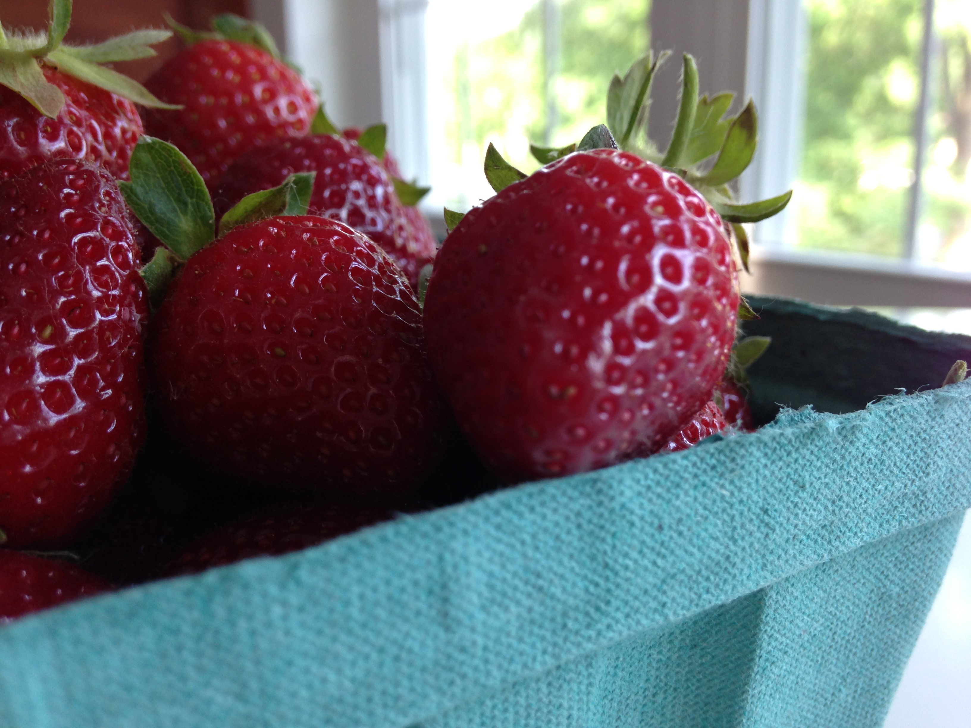 It's Strawberry Season in the Finger Lakes