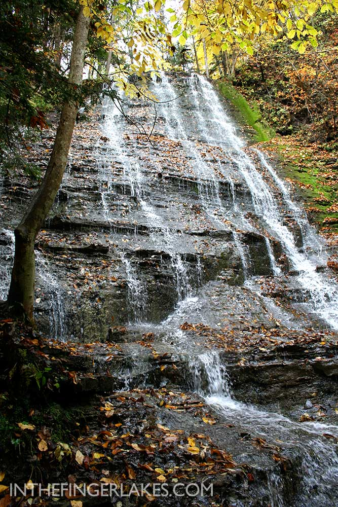 French Hill Falls at Grimes Glen, Naples, NY