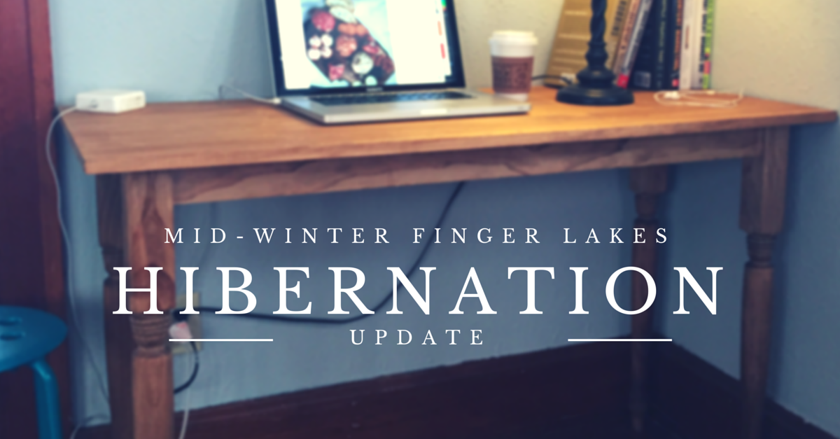 Mid-Winter Hibernation Update from The Finger Lakes